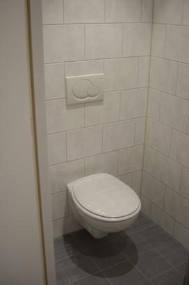Inrichting de dakhaas for Toilet betegeld